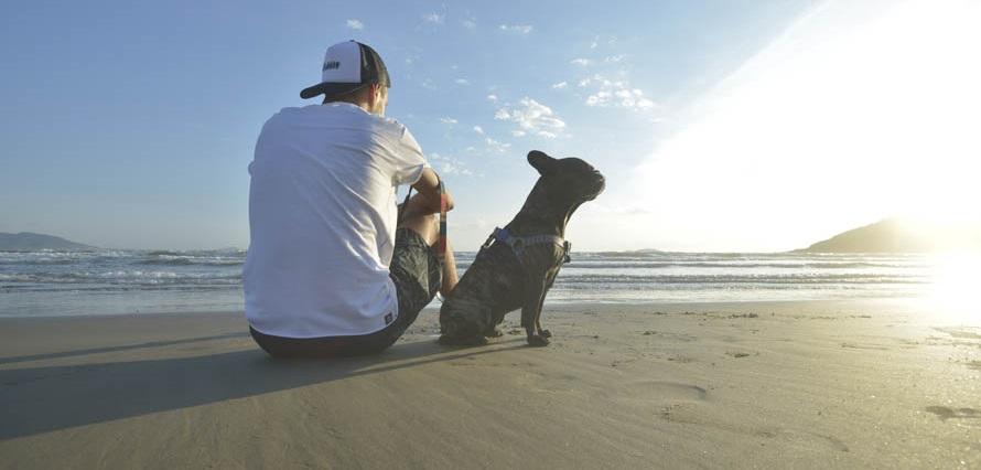 Passeio com Cachorro na Praia com Ridelf