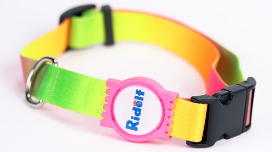 Coleira para Cachorro e Gato Modelo Poly Tie Dye Neon